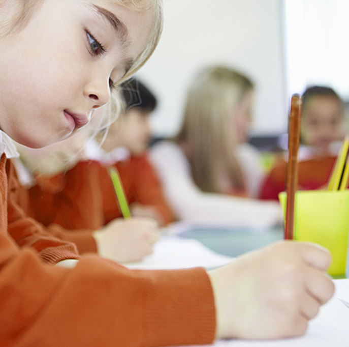 Sınav ve Etkinlik Takvimi